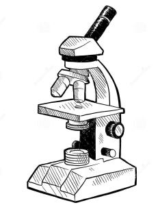 microscopiomonocular