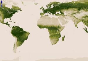 green-vegetation-map_521285f36a1ae_w1500
